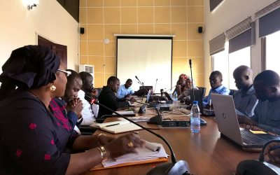 Implementation of Open Digital Spaces and the Virtual University in Senegal: a Journey through Transformative Innovation